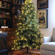 Decorating your Christmas Tree;  a Primer