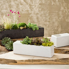 Modern Indoor Pots And Planters by Transom Design Build