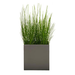 Modern Planter - Modern Cube Planter, Pewter, Medium - A slightly more low profile way to manage your growth rate. This unique planter is created with a smooth lip around the edge to give easy access and so you can remove overgrown plants without damaging the plant or root ball.