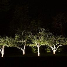 Modern  by Moonlighting Landscape Lighting Systems