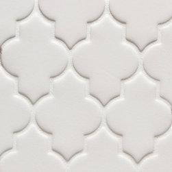 Vibe Ashbury Mosiac Field in White Matte - Ceramic and Terracotta