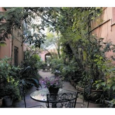 New Orleans' courtyard gardens stay lush in winter