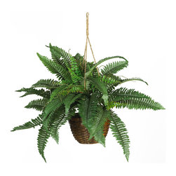 Nearly Natural - Nearly Natural Boston Fern Silk Hanging Basket - Travel back in time with this elegantly styled Boston fern silk hanging basket. Reminiscent of Victorian days, this native of the tropics has been a favorite throughout the years. A perfect compliment to your front porch area, this leafy creation is covered from head to toe with lush natural looking fronds. The expertly crafted alternate leaf pattern adds further to its authentic appeal. Nestled snuggly in a wicker basket, this impressive plant will provide you with years of carefree pleasure.