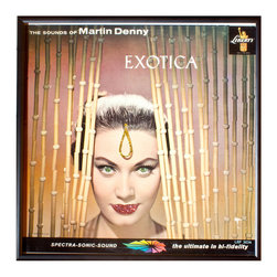 """Glittered Exotica Album - Glittered record album. Album is framed in a black 12x12"""" square frame with front and back cover and clips holding the record in place on the back. Album covers are original vintage covers."""