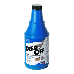Havahart - Deer Off Deer & Squirrel Repellent Concentrate Multicolor - DF16CT - Shop for Pest Control from Hayneedle.com! Deer Off Deer & Squirrel Repellent - 16 oz. Concentrate is used to repel deer but it is also ideal for use as both a rabbit and squirrel repellent. Havahart Deer Off has a patented Dual Deterrent System formula provides both scent and taste barriers to repel deer rabbits and squirrels. The formula contains putrescent eggs solids at 6.25% (0.78% when diluted) garlic and capsaicin. The putrescent egg and garlic scent coupled with a hot pepper taste will dissuade deer rabbit and squirrels from eating your plants bulbs flowers trees ornamentals and seedlings. Deer Off 16 oz. concentrate makes 1-gallon of weather-resistant ready-to-use formula which is enough to treat 200 ornamental shrubs 4 feet tall or approximately 1 750 sq. ft. of plantings. When applied as directed this animal repellent lasts up to 90 days.Deer Off deer rabbit and squirrel repellent is EPA registered for direct use on plants bulbs flowers and trees. It should not leave a visible film or residue and will not change the color of plants and foliage. Made in the USA.