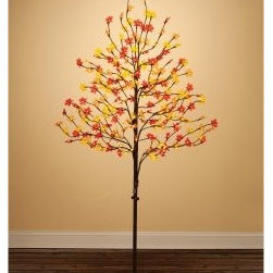 Sterling 6.5 ft. 240 ct. Warm White LED Indoor/Outdoor Sugar Maple Tree - Bring the warmth and wonder of autumn into your home with this Sterling 6.5 ft. 240 ct. Warm White LED Indoor/Outdoor Sugar Maple Tree. This 6.5-foot tree is built on a durable stand, ideal for indoor or outdoor use. Its leaves sparkle with 240 white mini-LED lights. It is sure to enchant young eyes and old eyes alike this coming fall.About Sterling, Inc.Located in Kansas City, MO, Sterling, Inc. carries an impressive, diverse selection of holiday decorations and accessories. With items such as miniature ornaments, table-top decorations, novelty lighting, stockings, and theme trees, Sterling, Inc. is recognized as One Great Source for holiday products. Two categories essential to Sterling, Inc. include Sterling's Forest, which is a full line of lifelike trees, pre-lit trees, wreaths and garlands, and Designer's Studio, which features versatile hand-blown and hand-painted glass. In addition to holiday products, Sterling, Inc. carries an exclusive line of palm trees, creative lighting and lawn decorations. Creating festive outdoor environments is top priority for Sterling, Inc., whose mission is To be the leader in our industry by exceeding the expectations of our employees, our employer, our sales agents, and our customers.