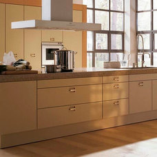 Contemporary Kitchen Cabinets by Designs Living Fine Cabinetry