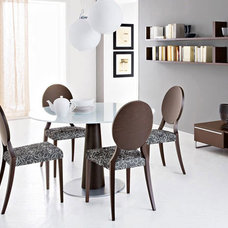 Modern Dining Chairs by Spacify Inc,