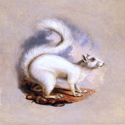 """II Titian Ramsey Peale White Squirrel - 16"""" x 16"""" Premium Archival Print - 16"""" x 16"""" II Titian Ramsey Peale White Squirrel premium archival print reproduced to meet museum quality standards. Our museum quality archival prints are produced using high-precision print technology for a more accurate reproduction printed on high quality, heavyweight matte presentation paper with fade-resistant, archival inks. Our progressive business model allows us to offer works of art to you at the best wholesale pricing, significantly less than art gallery prices, affordable to all. This line of artwork is produced with extra white border space (if you choose to have it framed, for your framer to work with to frame properly or utilize a larger mat and/or frame).  We present a comprehensive collection of exceptional art reproductions byII Titian Ramsey Peale."""