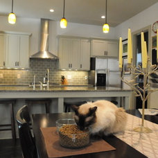 Contemporary Kitchen Cabinets by Southern Cabinet Works Inc