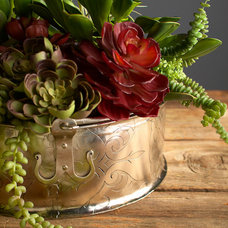 Traditional Plants by Robert-Lawrence Designs