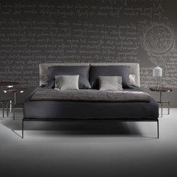 Flexform Sofas - Lifesteel Bed by Flexform