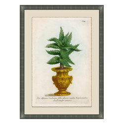 Soicher-Marin - Small Planters C - Giclee Print with a silver contemporary wood frame.  Print mounted on posterboard then floated on an off white mat.  Includes glass, eyes and wire. Made in the USA. Wipe down with damp cloth
