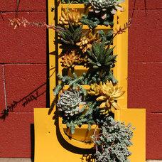 Eclectic Outdoor Pots And Planters by Carson Douglas Landscape Architecture
