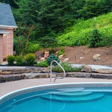 Traditional Pool by Deimler & Sons Construction