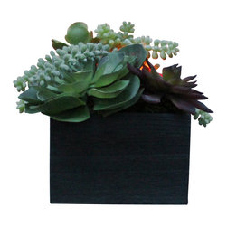 The Firefly Garden - Succulent Garden - Illuminated Floral Design, Medium, Kiri Wood Vase - Succulent Garden combines gorgeous multi-colored succulents with various floral accents. Featuring a water lily and cymbidium orchid, this piece is perfect for a chic loft or outdoor gathering. Succulents are the latest contemporary floral trend and make beautiful centerpieces for weddings, outdoor gatherings or in a casual dining room.