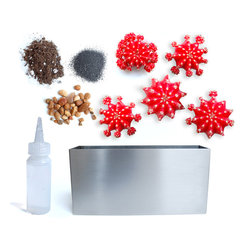 5-Moon Cacti Stainless Steel Planter