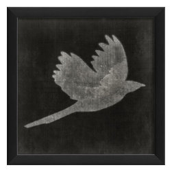 The Artwork Factory - Bird on Black 6 Framed Poster - Made in the USA.