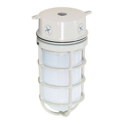 """Nuvo Lighting - Nuvo Lighting 76/616 Single Light 11"""" 100W Industrial Style Surface Mount Fixtur - Nuvo Lighting 76/616 Single Light 11"""" 100W Industrial Style Surface Mount Fixture with Caged Frosted Glass Shade, in White FinishNuvo Lighting 76/616 Features:"""