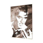 "READY2HANGART.COM - Ready2hangart Alexis Bueno Iconic 'Elvis' Acrylic Wall Art - Artist Alexis Bueno, takes you on a journey with this unique retrospective of the stars that affected Pop Culture through the past centuries with his series Iconic Art . This abstract rendition in acrylic art is offered as part of a limited ""Home Decor"" line, being the perfect addition to any contemporary space."