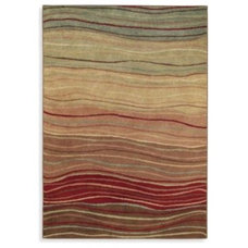 Contemporary Rugs by Bed Bath & Beyond