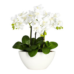 Covered In Style Inc - Phalaenopsis w/White Vase Silk Flower Arrangement - Nothing freshens up a room like a cluster of orchids. This trio of white phalaenopsis reaches up from a soft white vase, creating a burst of contrasts with straight stems, cloud-like blooms and smooth buds. Place this by your bedside for an instant mood lift.