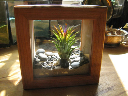Eclectic Terrariums by Etsy