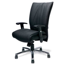 Modern Task Chairs Flaire Gold Executive Chair by Highmark Ergo