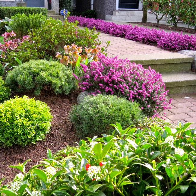 Klavdi kukovic vancouver garden designer for Garden design vancouver