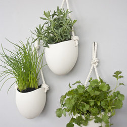 Spora Ceramic + Cotton Rope Planters,  Set of 3 - Instead of (or in addition to) art, try adding some plants to your wall. These ceramic planters hang on simple rope cords.