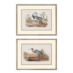 Paragon - Audubon Herons PK/2 - Framed Art - Each product is custom made upon order so there might be small variations from the picture displayed. No two pieces are exactly alike.