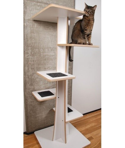 Modern Pet Supplies by Wayfair