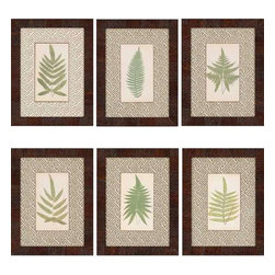 Paragon Art - Paragon Ferns ,Set of 6- Artwork - Ferns ,Set of 6                ,  Paragon Artist is Lowes , Paragon has some of the finest designers in the home accessory industry. From industry veterans with an intimate knowledge of design, to new talent with an eye for the cutting edge, Paragon is poised to elevate wall decor to a new level of style.