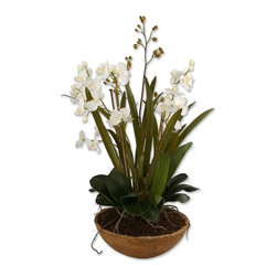 Uttermost - Uttermost Moth Orchid Planter Planter in Handpaint - Shown in picture: Handpainted - Natural Brown Dish Garden Of White Moth Orchids Planted In Permanent Soil With Mixed Foliages From The Orchid Family. Hand painted - natural brown dish garden of white moth orchids planted in permanent soil with mixed foliages from the orchid family.