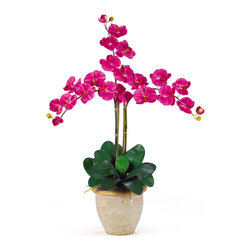 "Nearly Natural - Nearly Natural Triple Stem Phalaenopsis Silk Orchid Arrangement in Beauty - Looking for the Perfect Orchid with absolutely no maintenance? The triple stem phalaenopsis is a classic Orchid to be enjoyed by all, even the most discriminating customer. Each silk plant comes with three beautiful phalaenopsis stems each with 6 flowers and 2 buds. finished with a gorgeous glazed ceramic vase designed to coordinate with any decor, this beauty will bring color and life into any space. Color: Beauty, Height: 27"", Vase: H: 7"" W: 8-1/2"""