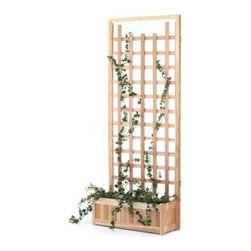All Things Cedar Rectangle Western Red Cedar Wood 2-Piece Planter with Trellis-P - Help your climbing flowers reach for the sun with this lovely 2-Piece Planter with Trellis Panel set made of sun-friendly Western red cedar hardwood sanded silky smooth. The generous water-loving planter is backed by a full width trellis to perfectly present your flowering vines. All edges are routed smooth to a soft elegant corner. Handcrafted quality using hardwood dowels means tight fitting joints and years of beauty as the unstained wood ages with elegant grace.About Cedar WoodCedar wood is lightweight and resistant to both cracking and moisture rot. The oils of this resilient wood guard against insect attack and decay and their distinctive aroma acts as a mild insect repellant. Cedar is a dependable choice for outdoor furniture either as a finished or unfinished wood. Over time unfinished cedar left outdoors will weather to a silvery gray patina. This natural process does not compromise the strength or integrity of the wood.Another great aspect of cedar is its environmental effect - which is minimal. A renewable resource cedar wood emits low greenhouse gases. So rest assured knowing that your beautiful cedar furniture is a green choice too!About All Things CedarA world leader in fine patio furniture garden furniture and other accessories All Things Cedar is a smart choice for your outdoor needs. They offer an extensive line of unique items made from high-quality weather-resistant woods including clear-grade cedar teak and more. Their items are designed with care in timeless fashions that are sure to enhance your space. All Things Cedar prides themselves on fine customer service and dependable products.