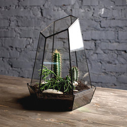 Glass Terrarium, 'Crystal' by Boxwood Tree - I have to say that I'm slightly obsessed with diamond-shaped glass terrariums. What a perfectly cute ecosystem they create!