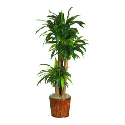 """Nearly Natural - 62"""" Dracena w/Basket Silk Plant (Real Touch) - Transform your dull office into a jungle safari with this beautiful African Dracaena. Unlike other silk creations, this expertly crafted piece both looks and feels real to the touch. Three bushels of pin-striped ribbon style leaves bow gracefully forward. Over 5' high, this lovely ornamental plant will flourish maintenance-free in any environment. A stylish bamboo planter is the perfect compliment for this sub-Saharan beauty."""