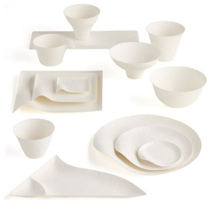 Contemporary Disposable Plates And Bowls by A+R