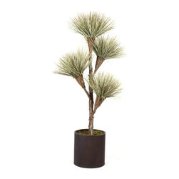 Dalmarko Designs - 6.5' Preserved Petite Natural Dracena Tree - This exclusive Dracena tree is completely grown in California and handcrafted by our artisans with over 30 years of experience. Our petite Dracena tree fits in any home! Shown as is, 6.5 x 4 blooms in a natural color, planted in a round metal planter.