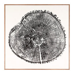 Wood Cross Section - Framed Print - High contrast and high drama on a grand scale, the Wood Cross Section Framed Print brings classic printmaking into a thoughtful, organic mode. Playing on the naturalist tradition to create an unexpected look, this artwork in bold black and white captures the fine texture and infinite complexity at the heart of a newly-cut tree, down to the bark clinging at the edges.