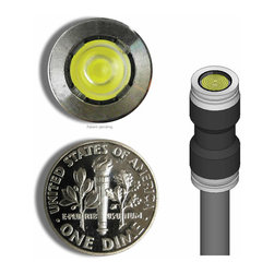 MINIMIS - WORLD'S SMALLEST LANDSCAPE LIGHT - 1UP - Tiny in design, huge in power, this landscape light is the perfect seen-but-hidden illumination for your sophisticated room decor. No bigger than a dime, you'll get more than your money's worth of light, and you can highlight those pieces in your room that deserve the showcase.