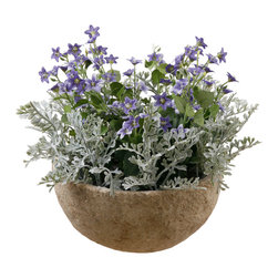 Jane Seymour Botanicals - Jane Seymour Botanicals Spring and Summer Floral Planter - Wild violets and dusty miller bursting out all over in a weathered-looking round terracotta planter. 12 inches tall, 14 inches in diameter.