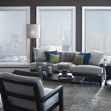 Roller Shades by Blinds Supreme
