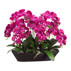Silk Plants Direct - Silk Plants Direct Phalaenopsis Orchid (Pack of 1) - Pack of 1. Silk Plants Direct specializes in manufacturing, design and supply of the most life-like, premium quality artificial plants, trees, flowers, arrangements, topiaries and containers for home, office and commercial use. Our Phalaenopsis Orchid includes the following: