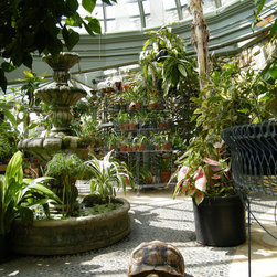 Greenhouse - The room, with its tiled floor, pebbled paths and mosaic inlays, is also house to a collection of turtles, tortoises, birds, fish, and iguanas, as well as the client's dogs and parrot which accompany her on her rounds every day.