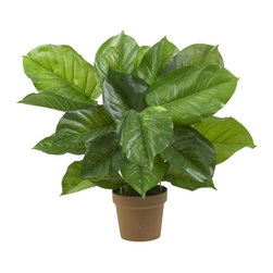 Large Leaf Philodendron Silk Plant (Real Touch) - An abundance of bold lush greenery decorates this large leaf Philodendron. Not only does this plant have a highly detailed leaf pattern but it also feels real to the touch. So real in fact, your guests won't know the difference. Slender delicate stems sprout forth. Perfect for your home or office. Height= 27 in x Width= 32 in x Depth= 27 in