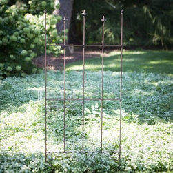 Coral Coast Acropolis Metal Trellis - Climbing vines and veggies will love having the Coral Coast Acropolis Metal Trellis for a neighbor. This iron trellis features fleur-de-lis details and classic scrolls for a traditionally gothic look. About Coral CoastWhat if when you closed your eyes you pictured yourself in your own backyard? Coral Coast has a collection of easygoing affordable outdoor accessories for your patio pool or backyard. The latest colors and styles mingle with true classics in weather-worthy fabrics and finished woods ready for relaxation. Make yours a life of leisure.