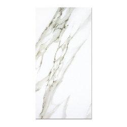 Eleganza - Eleganza - Gemstone Calcatta White Field (Polished) 12x24 - GCW1224-1 - Gemstone Collection