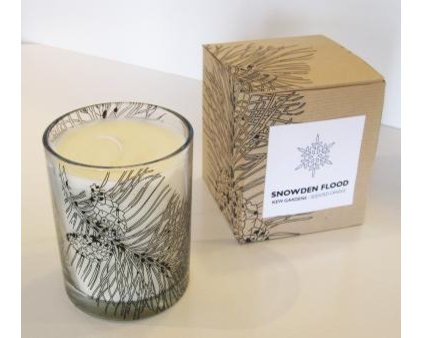 Modern Candles by Snowden Flood
